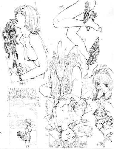 鳥本へのイメージ1